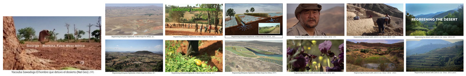 Turning                             the desert into forest - completely                             restoring of ecosystems - examples from                             Africa and China